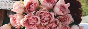 Programmes de fidélisation client pour les fleuristes